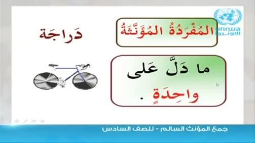 الطالبة ميس معاوية  اللغة العربية واساليب تدريسها