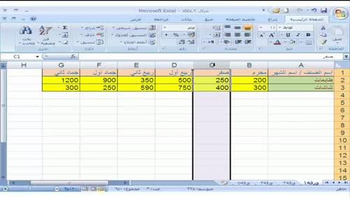 برنامج Excel 2007 - التعامل مع المصنّف - الحذف في الجدول